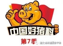 猪太傅饲料_第七季中国好猪料创新之星评选